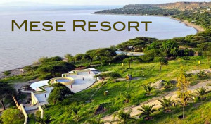 Mese Resort